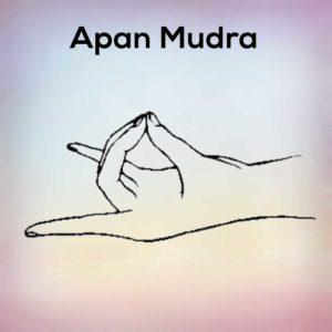 yoga mudras hast mudras and all its benefits  nexoye