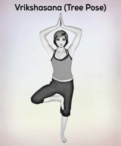 vrikshasana tree pose steps benefits precautions  nexoye