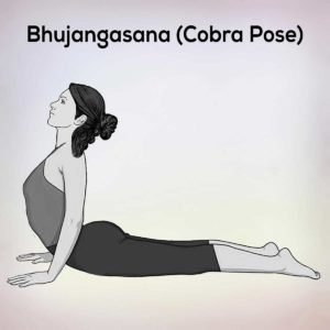 ardha padmasana half lotus pose steps benefits